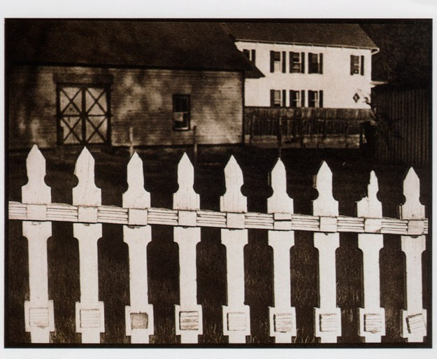 Paul_Strand-Fence