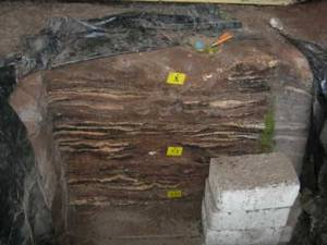 Layer of successive hearths from Kebara Cave in Israel, dating to 58,000 to 46,000 BCE.