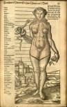 Figure 4: Eve, Thurnneiser Confirmatio 1576 -p35a