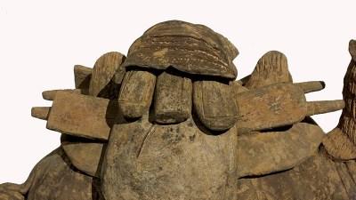 Rare Bactrian Camel (3)