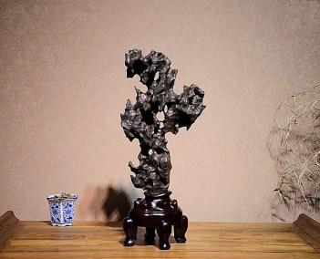 Fine Large Taihu Scholars Rock (1)