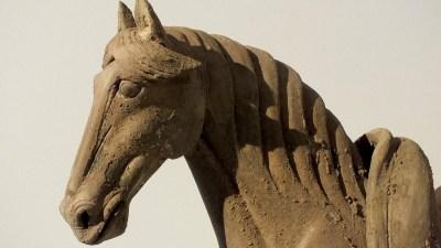 Tang Dynasty Horse (8)