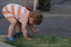 Grass baby at Becketwood
