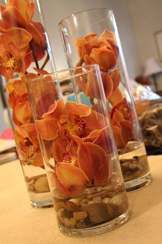 Submerged stems of Cymbidiums in cylinder vases [image from boards.weddingbee.com, via Pinterest]