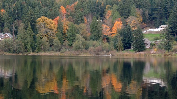 Erie Lake in the fall.