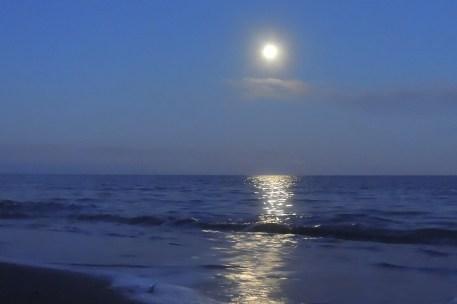 Full Moon 928201517