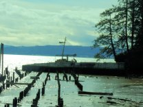 Many wrecks dot the inland tide zones of the Columbia river.