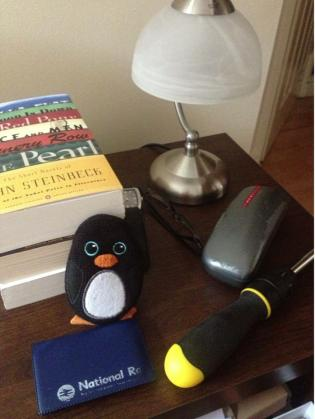 This friend likes to read with his penguin