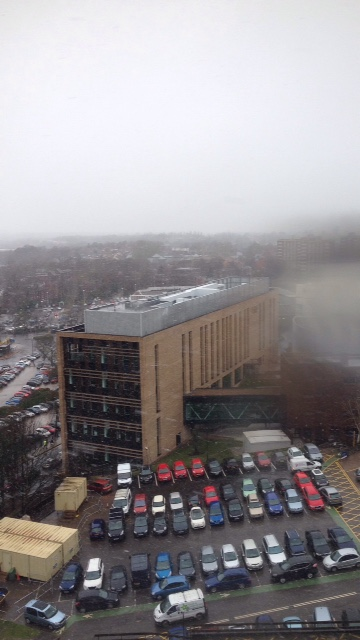 The view - Wolverhampton in the fog and snow