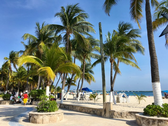 Isla Mujeres beach with palm trees