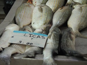 Grey Mullet - the ones at bottom not the stripy ones!