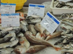 As well as the Red Bream, there is White Sea Bream and Red Mullet (Salmonete) here