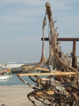 Drying in Olhão harbour
