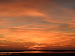 Orange skies