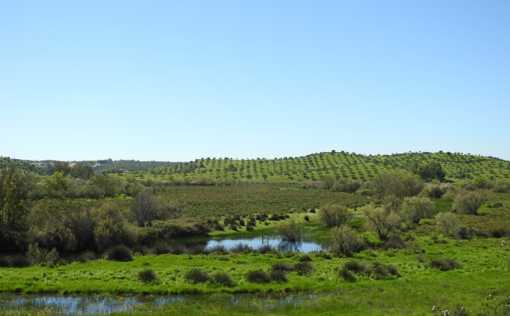 Baixo Guadiana
