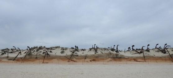 60 years worth of sand