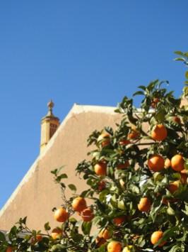 Algarvian blue and orange!