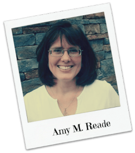 Amy M. Reade 2