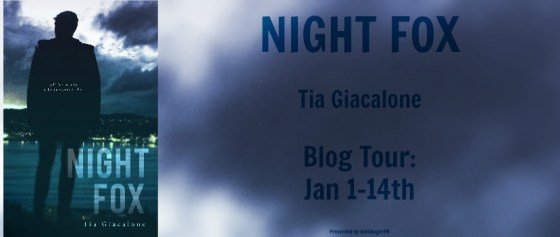 Night Fox BT Banner