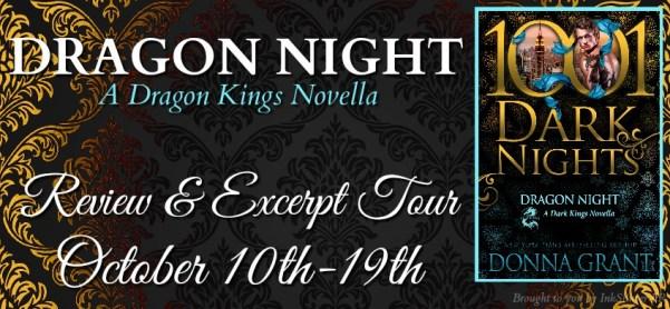 Dragon Night tour banner