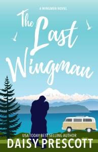 The Last Wingman cover