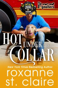 Hot Under the Collar cover
