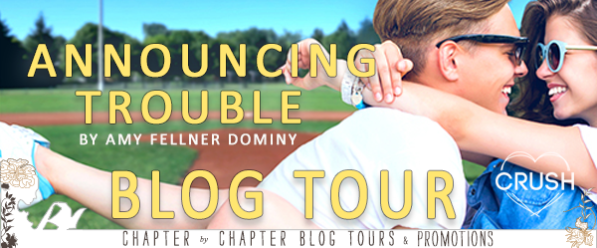 Announcing Trouble blog tour banner