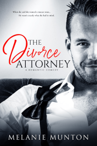 The Divorce Attorney cover