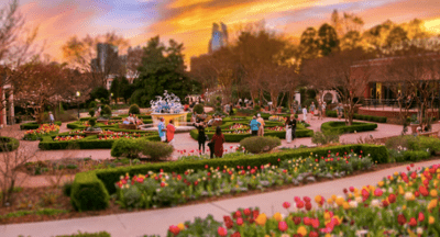 Atlanta Botanical Garden Member Spring Evening