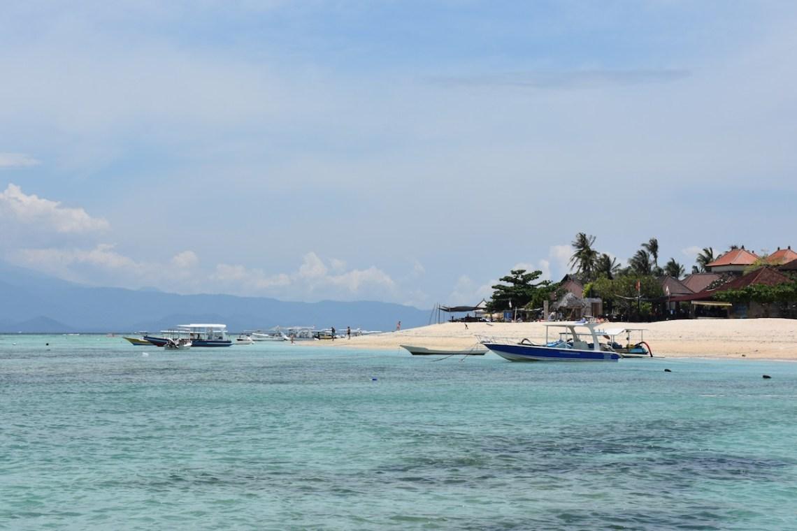 Dolphin Watching Singaraja Lovina Tours   Bali Tour Packages  Bali Tourist Destinations: 58 C BALI TOURS