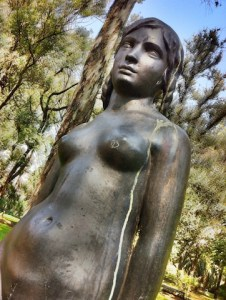 What I saw today in the Buenos Aires Botanical Garden… A story by Becky Wicks age 32