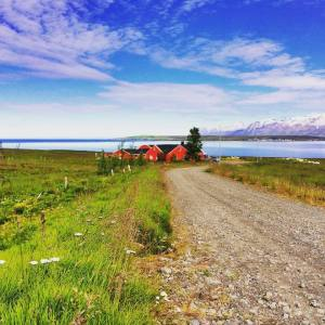 Adventures in Iceland (in brief because I'm VERY remote right now and WIFI is scarce)…