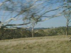 Heading toward the Blue Mountains