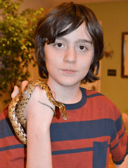Corn Snake - Colonel Shucks. He is so chill, and the Padawan ADORES him. So do I.