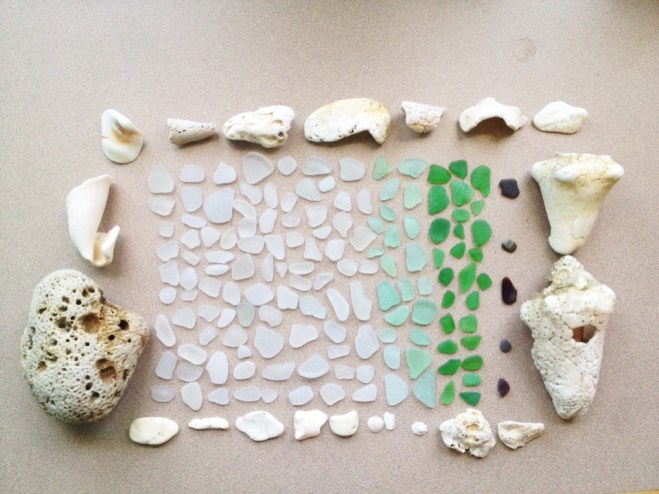 My sea glass and shell collection, plus a piece of coral.