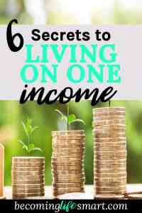 This is a great guide on how to live on one income and save the other. I'm going to try some of these tips and be more frugal. | budgeting | small income | saving on a small income | living on one income | tight budget | www.becominglifesmart.com