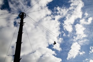 Shoes on the Wire. Photo by AF Rodrigues