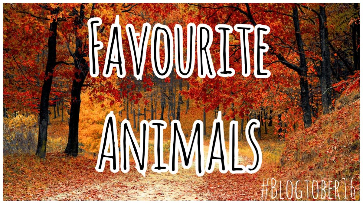 Favourite Animals