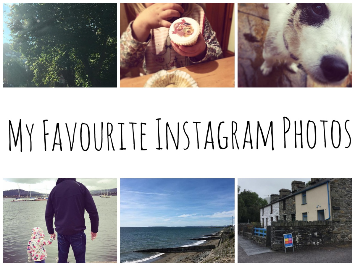 My Favourite Instagram Photos