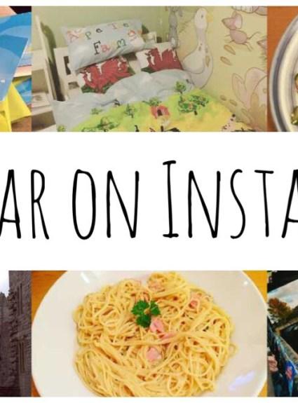 My Year on Instagram