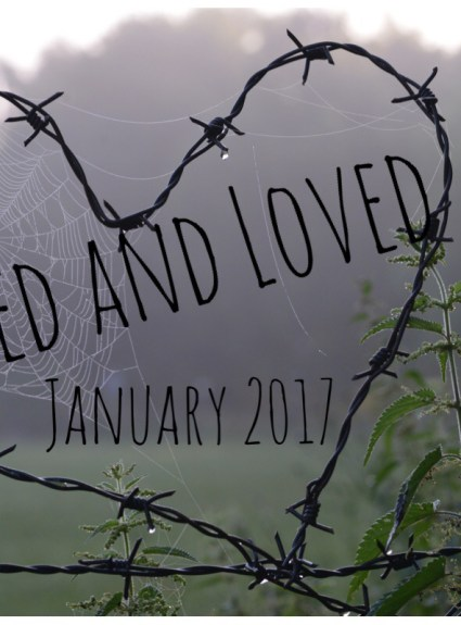Liked and Loved – January