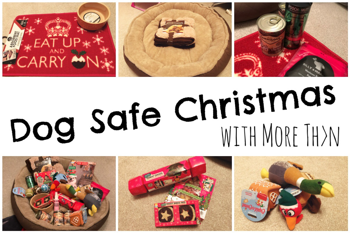 Dog Safe Christmas with More Than Header image