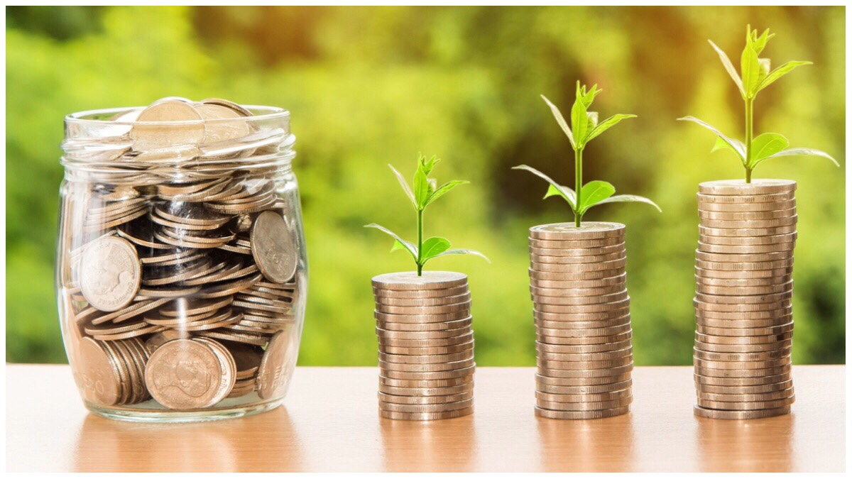 Coins in piles and in a jar against a backdrop of greenery depicting money trees