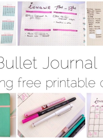 2019 Bullet Journal Setup (with free printable)