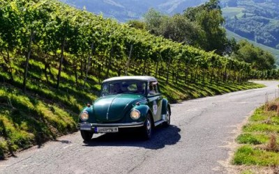 La route des crêtes des Vosges et la route des vins d'Alsace
