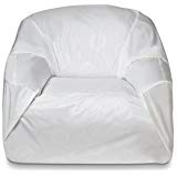 Bed bug encasement or cover for chair.
