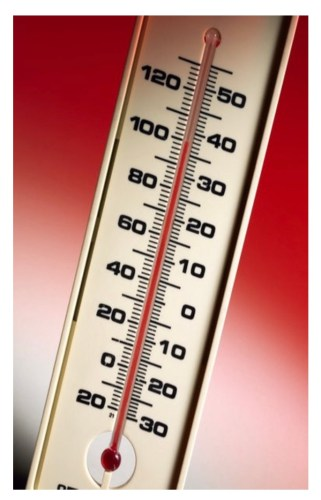 Bed bugs do not like temperatures over 90 degrees Fahrenheit or under 65 degrees Fahrenheit.