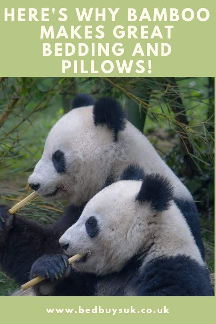 Here's Why Bamboo Makes Great Bedding and Pillows!