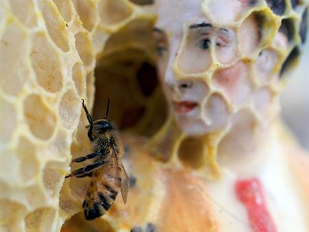 Aganetha Dyck, Matador, 2010-2011, Porcelain figure, beeswax, honeycomb (detail) (image via apexart)