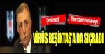 Virüs Beşiktaş'a sıçradı!